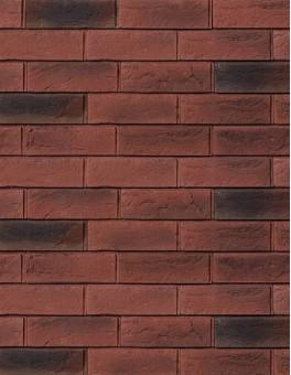 Вальдер - 03-63 Красный пестрый